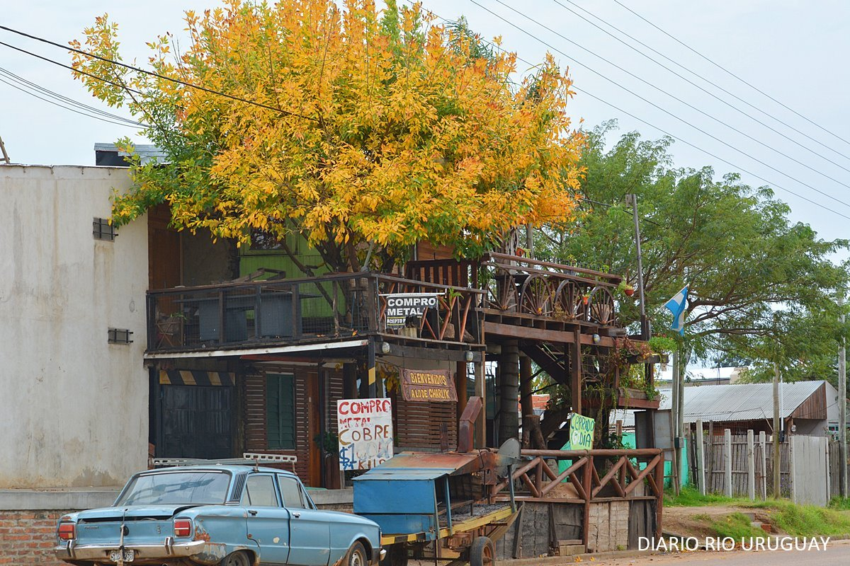 La casa que abrazó al fresno en calle Concejal Veiga