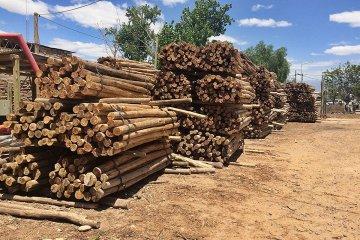 El sector forestal se interiorizó sobre el acceso al Fondo Multisectorial