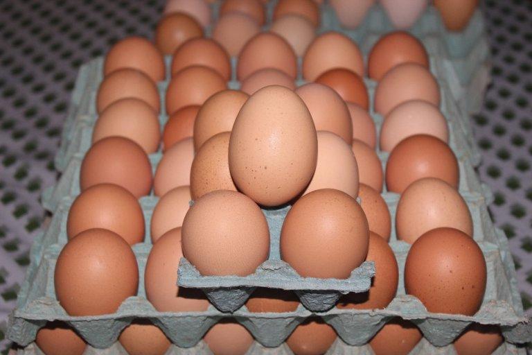 La vedette será la oferta de huevos.
