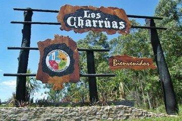 Preocupación en Los Charrúas por la viralización de un video sexual donde participarían menores