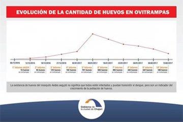 Aseguran que descendió la cantidad de huevos de Aedes Aegypti en Chajarí