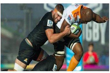 El DT de Jaguares apostó por Kremer, será titular en la cuarta fecha del Súper Rugby