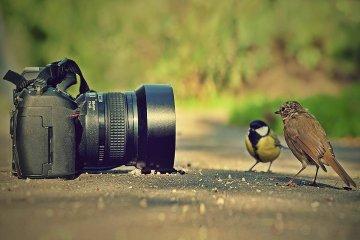 Vicegobernación lanzó el segundo concurso de fotografía
