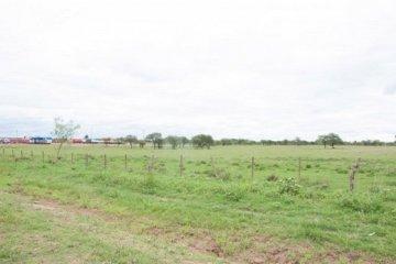 El municipio de Chajarí asignará 197 lotes para la construcción de viviendas