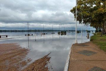 El río Uruguay comenzó a descender en el puerto Concordia
