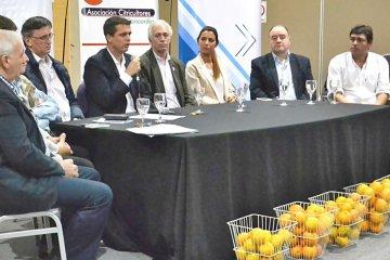 Distintos actores del sector citrícola trabajan en un proyecto de recuperación