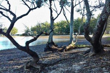 Hallaron sin vida a un hombre en la zona del Lago de Salto Grande