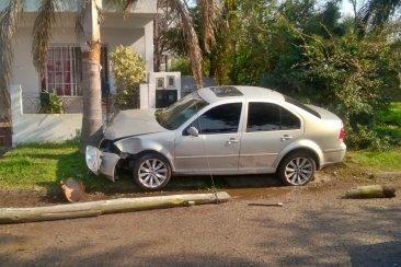 Se descompuso al volante derribó un poste de luz y terminó impactando una palmera