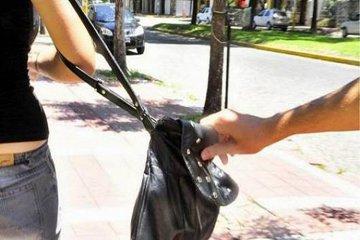 Un menor le arrebató la cartera a una mujer y originó una persecución