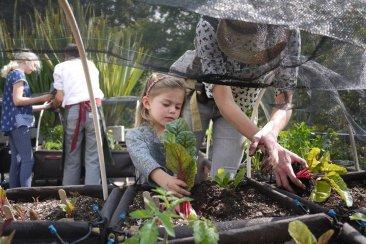 Pirí Hüé recibirá la primavera con un Taller de Huerta Ecológica para niños