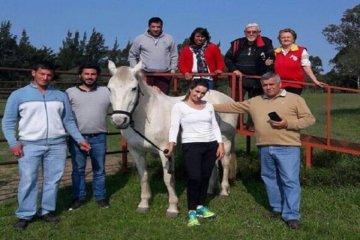 Buscan concretar el proyecto de Ley Provincial de Equinoterapia