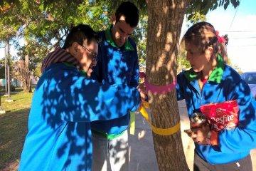 Colocando lazos de colores en los árboles se busca crear conciencia sobre la integración