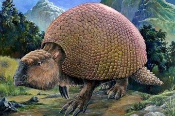 Rescatan restos fósiles de un animal prehistórico a la vera de un arroyo