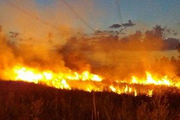 VIDEO: Un incendio puso en peligro a la red de alta tensión de Salto Grande y tres viviendas