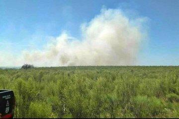 Se necesitaron casi ocho horas para controlar un incendio forestal