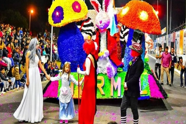 Tras 20 años, el pasado año retornaron los desfiles de carrozas en Federación.