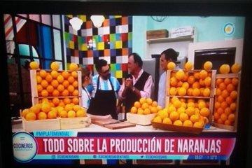 La FeCiER estuvo en Cocineros Argentinos promocionando el consumo de cítricos dulces