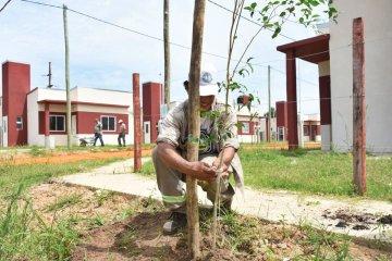 80 árboles autóctonos fueron plantados en el nuevo barrio del IAPV