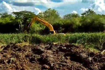 Denuncian la destrucción de un humedal en inmediaciones de la CAFESG