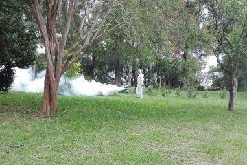 El clima obliga a intensificar los operativos de fumigación
