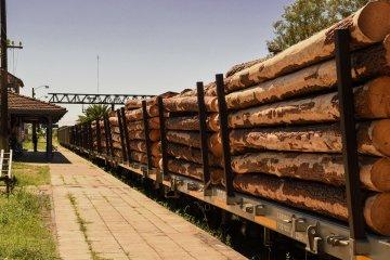 Afirman que con los puertos entrerrianos operativos se reactivó el ferrocarril de carga