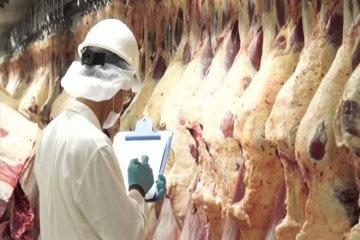 Avanzan las gestiones para exportar carne entrerriana a China