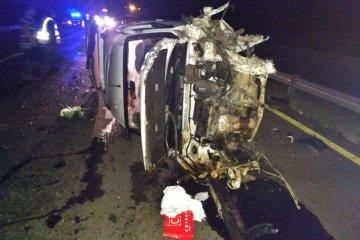Un animal habría provocado el vuelco de una camioneta en la autovía