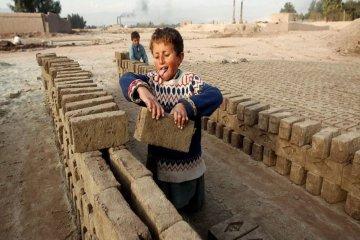 En Entre Ríos se debatirán las políticas públicas para erradicar el trabajo infantil