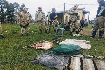 Secuestran armas y animales faenados en diversos allanamientos