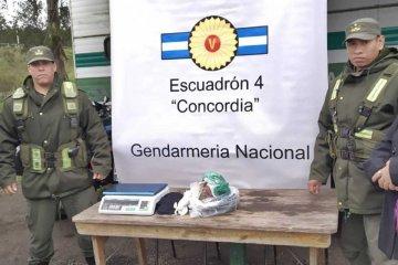 Gendarmería detectó más de un kilo de marihuana oculto en un micro de larga distancia