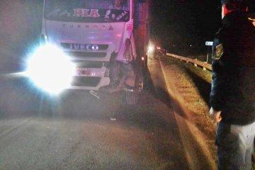 Un camión atropelló y mató a un caballo en ruta 18