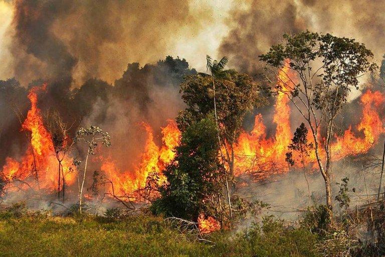 """En Concordia están """"atentos"""" ante los incendios en el Amazonas."""