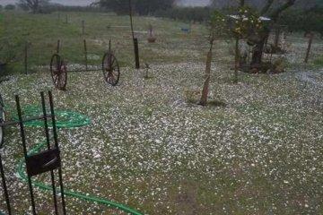 La tormenta de Santa Rosa no provocó los daños que se temían en la producción citrícola
