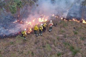 DESDE EL DRONE: Los bomberos luchando cuerpo a cuerpo con un incendio forestal