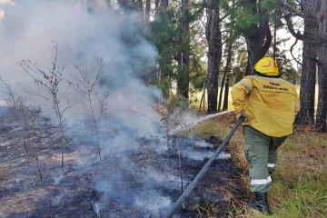 Fueron cuatro incendios casi en simultáneo a los que tuvieron que hacer frente los bomberos