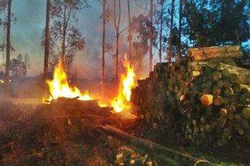 Bomberos Voluntarios debieron combatir un voraz incendio en el Parque Industrial