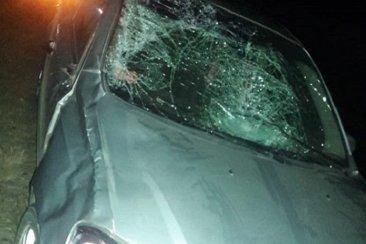 Una familia protagonizó un siniestro vial tras embestir a un caballo con su automóvil