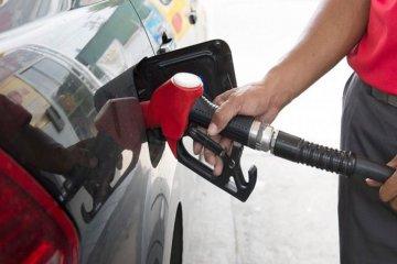 Autorizaron subas en los precios de los biocombustibles