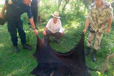 Detuvieron a un policía por robar y carnear una vaca