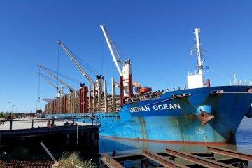 34 mil toneladas de madera de pino se cargan en puerto entrerriano para exportar a China