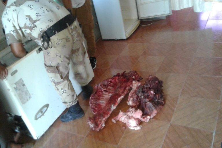 Cuatro personas demoradas tras ser acusadas carnear un porcino de más de trescientos kilos