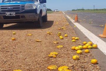 Un camión volcó parte de la carga de citrus de transportaba sobre la autovía 14