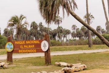 Dos guardavidas concordienses salvaron la vida de una niña en El Palmar