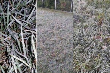 Ya se registraron las primeras heladas en la región