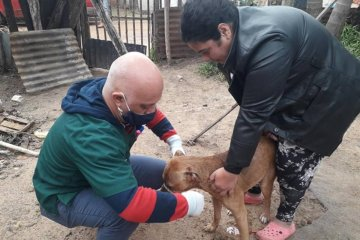La veterinaria municipal cierra octubre con más de 400 castraciones