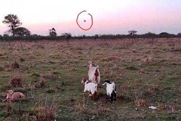 Un extraño objeto fue fotografiado en el cielo de Feliciano