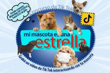 Salto Grande invita a jóvenes y niños para que realicen videos con sus mascotas y lo suban a una red social