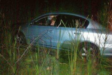 Por esquivar un carpincho terminó despistando su automóvil