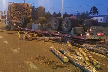 Un camión cargado con palos de pino volcó su acoplado en plena autovía 14