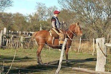 El joven peón que se cayó del caballo mostró signos favorables y podrían sacarle el respirador mecánico